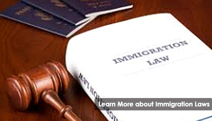Learn More about Immigration Laws